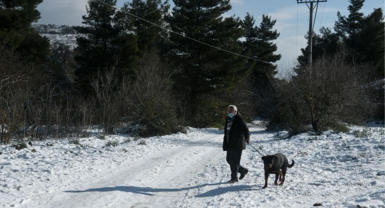 Κλέαρχος Μαρουσάκης: «Δύσκολη μέρα» για την Αττική η Δευτέρα - Θα χιονίσει και στο Φάληρο - Media
