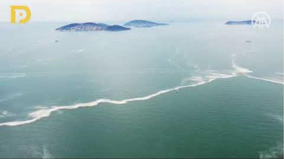 Marmara Denizi için korkutan deniz salyası açıklaması